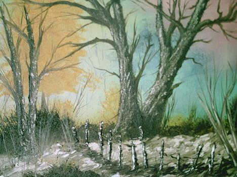 Path to Spring by Jim Saltis