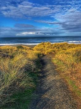 Path to the Beach by Bonnie Bruno