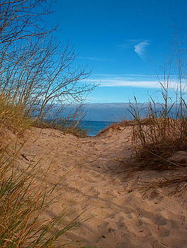 Path to the Beach by Denise   Hoff