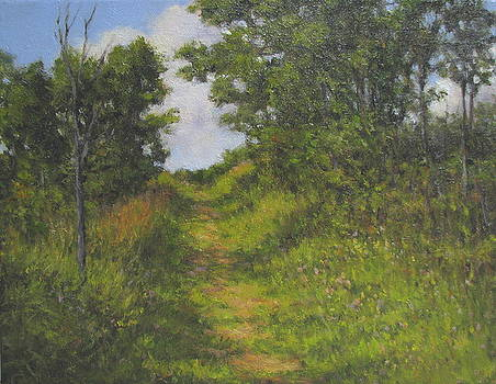 Path to the Field by Stephen Howell