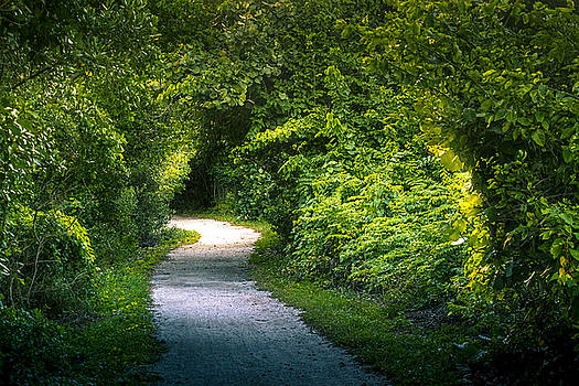 Path To The Secret Garden by Marvin Spates