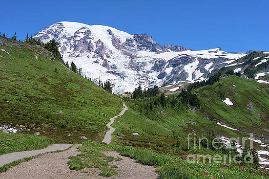 Path to the Summit by Sharon Seaward