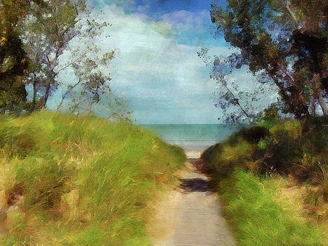 Path To Whihala Beach 2  by Cedric Hampton