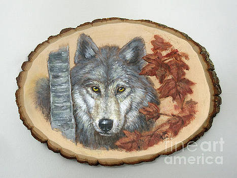 Wolf - Paths to Balance by Brandy Woods