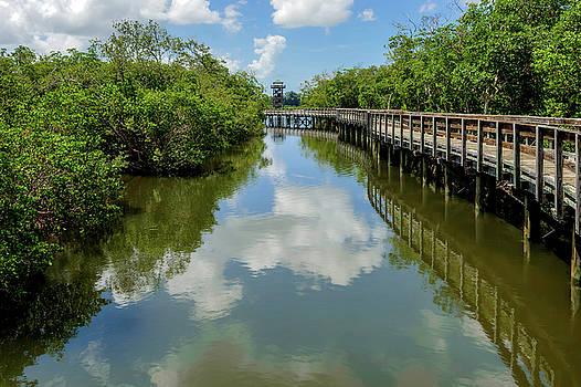Pathway Through Salt Water Marsh To Observation Tower  -  preservetowerwalkway135457 by Frank J Benz