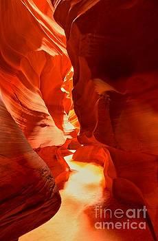 Adam Jewell - Pathway Through Upper Antelope