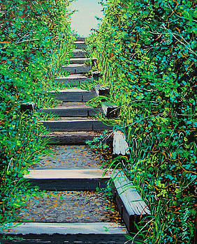 Pathway to Puget Sound by Stephen Ponting