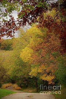 Pathway to Winter by Deb Halloran