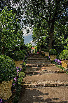 Pathway Up to De Golyer House by Allen Sheffield