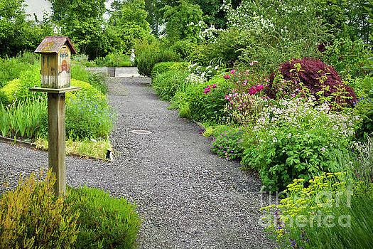 Pathways in a Summer Garden by Maria Janicki