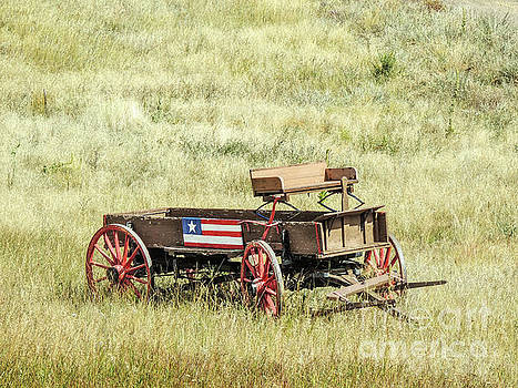 Patriotic Buggy by Lynn Sprowl