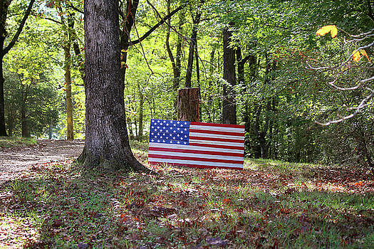 Art Block Collections - Patriotic Flag in Kentucky