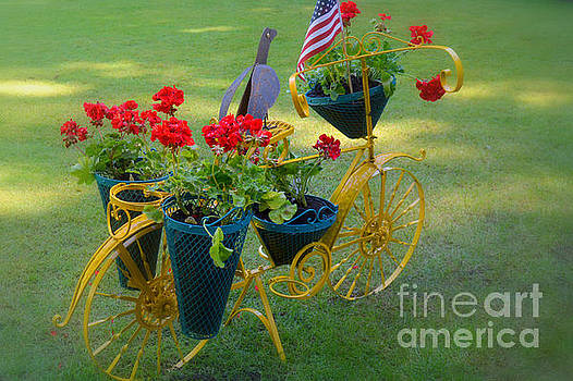 Patriotic Garden Decor by Tanya Searcy