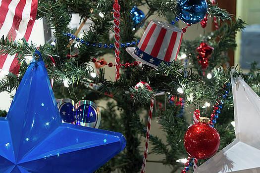 Patriotic Holiday by Liza Eckardt