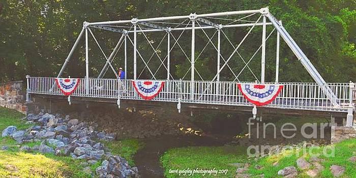 Tami Quigley - Patriotic Pony Bridge