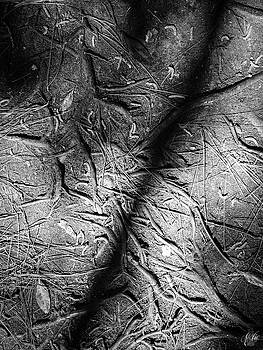Patterns, No. 3 by Elie Wolf