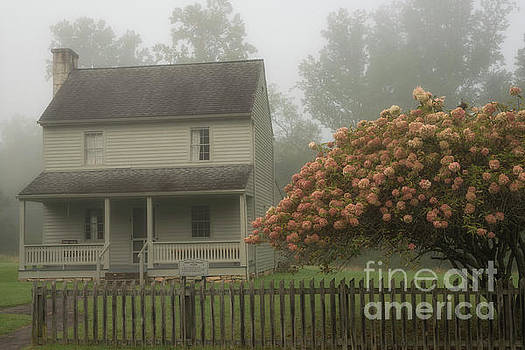 Patterson House and Fog by Thomas R Fletcher