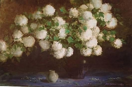 Paula's Snowballs by Naomi Dixon