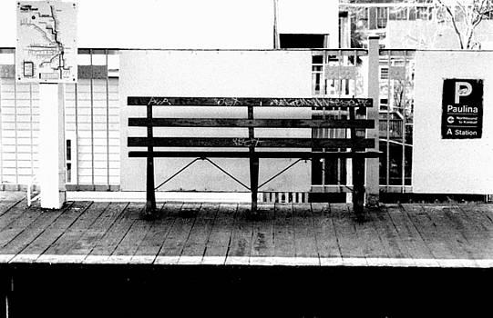 Paulina Subway Stop  by Paul  Simpson