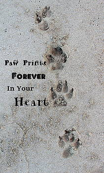 Fiona Kennard - Paw Prints Forever In Your Heart