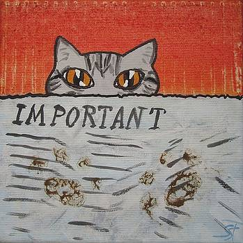 Pawprints by Sabine Steldinger