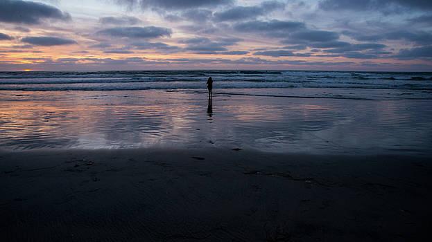 Peace and Solitude  by Sanam Salehian