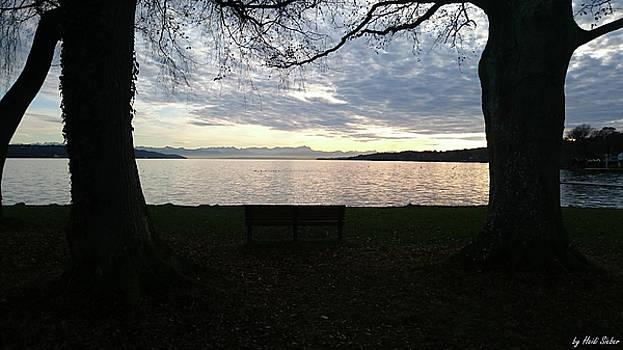 Heidi Sieber - Peace bench
