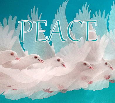 Peace Doves by The Creative Minds Art and Photography