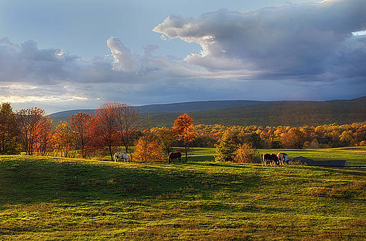 Peace in the Country by Eleanor Bortnick