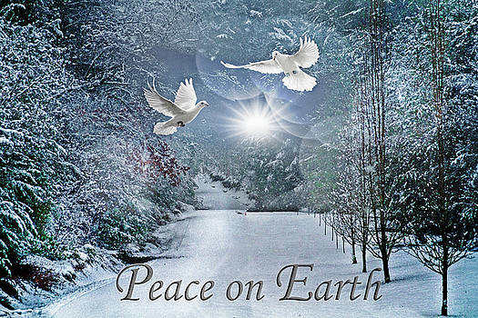 Debra and Dave Vanderlaan - Peace on Earth at Christmastime
