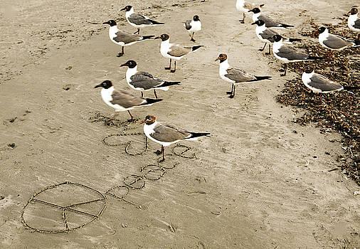 Marilyn Hunt - Peace on the Beach