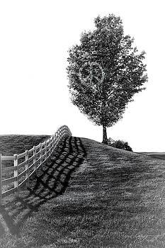 Peace Tree by J Thomas