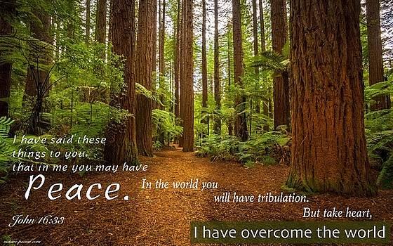 peace6