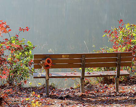 Peaceful Bench by George Randy Bass