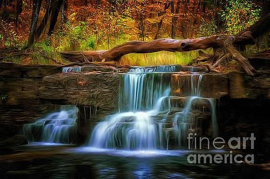Peaceful by Bill Frische