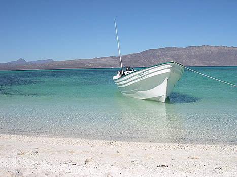 Peaceful Boat by Leslie Brashear