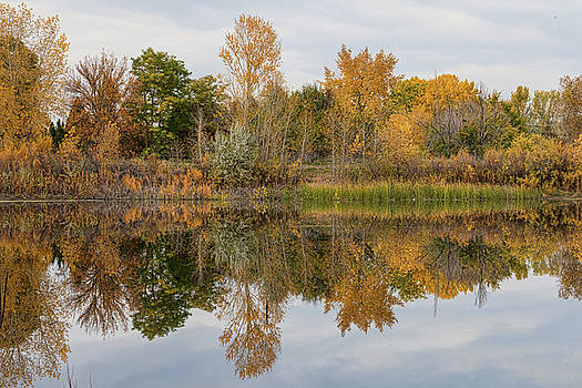 Peaceful Calm Autumn Afternoon by James BO Insogna
