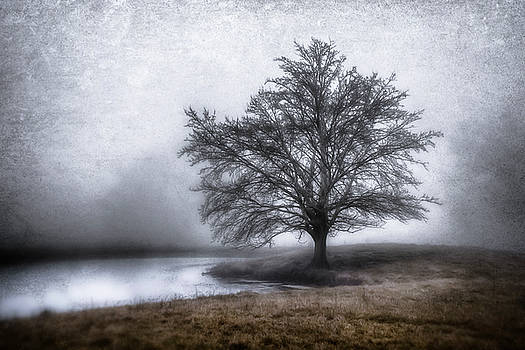 Peaceful Country Setting by Garett Gabriel