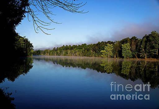 Peaceful Dream by Douglas Stucky