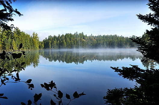 Peaceful Lake  by Erin Clausen