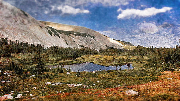 Peaceful Meadow  by Garett Gabriel
