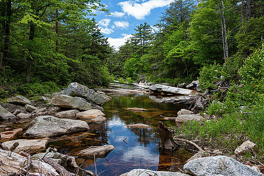 Peaceful Morning on the Peterskill by Jeff Severson