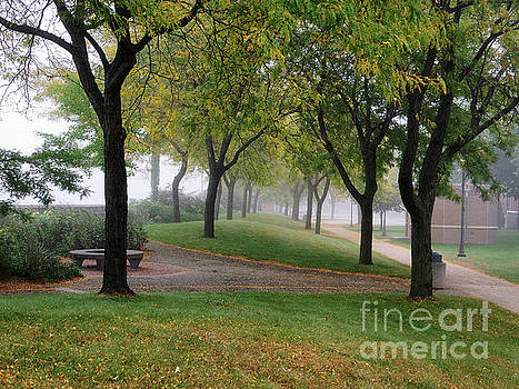 Peaceful Morning Winona Minn Levee Park by Kari Yearous