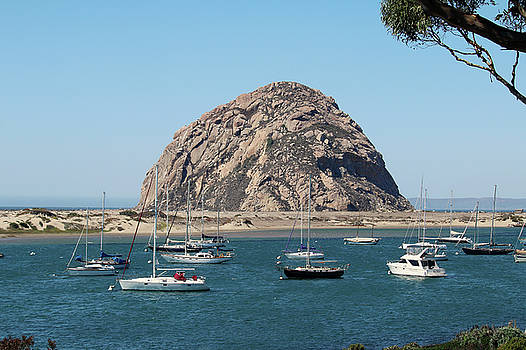 Art Block Collections - Peaceful Morro Bay