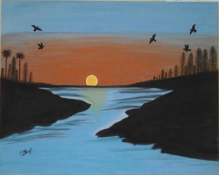 Peaceful Nature  by Catherine Velardo