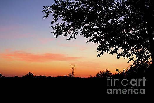 Peaceful Night by Kristi Beers-Mason