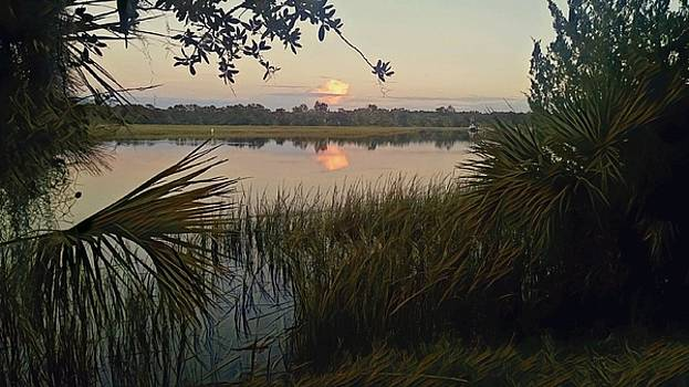 Peaceful Palmettos by Sherry Kuhlkin
