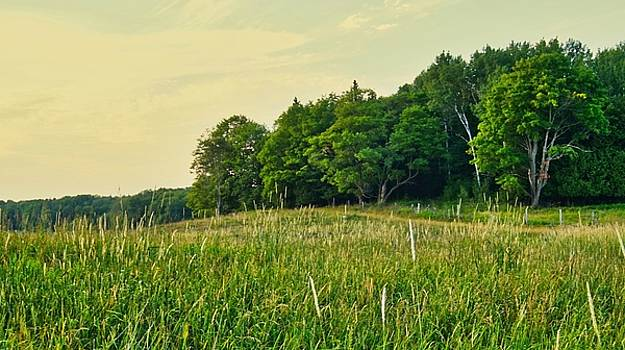 Peaceful Pastures by Bryan Smith