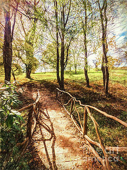 Peaceful Path by David Lane