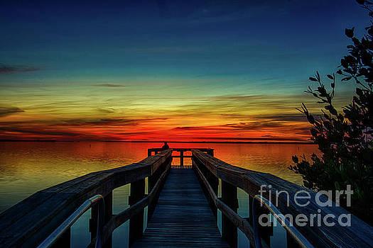 Peaceful skies by Quinn Sedam